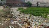 The sheer volume of garbage